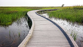 Boardwalk curves through  a marsh and wetlands at Sabine National Wildlife Refuge in Louisiana