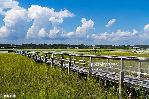 Boardwalk to Boat Dock in Salt Marsh