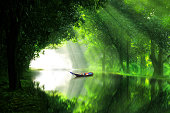 A boat in river under green forest shelter