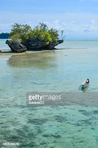 Barco en playa Tropical : Foto de stock