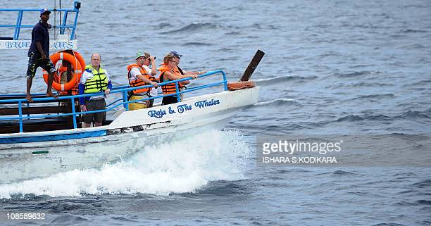 A boat load of foreign tourists watch blue whales swimming off the southern Sri Lankan town of Mirissa on January 30 2011 Sri Lanka navy is deploying...