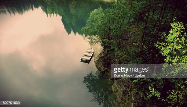 Boat Moored At Lake By Trees