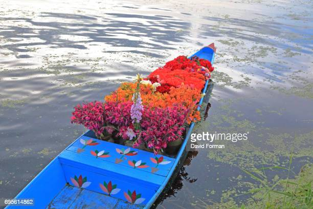 Boat selling flowers around Lake Dal, Srinagar.