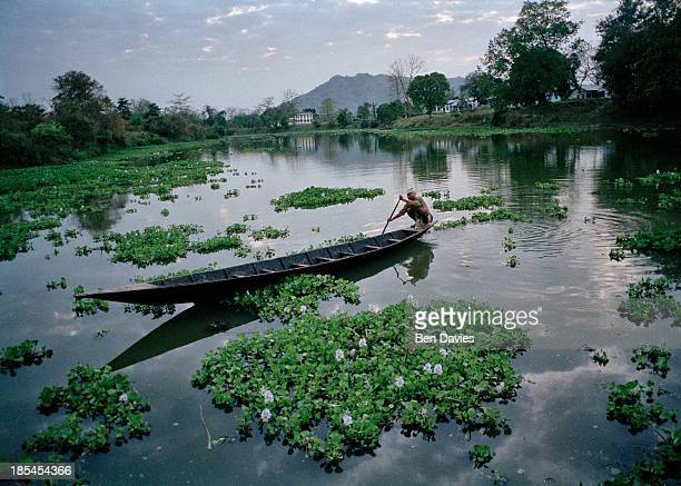 PABITORA GUWAHATI ASSAM INDIA A boatman paddles past water hyacinths at dusk in Pabitora Wildlife Sanctuary in Northeast India Pabitora has the...