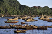 Boats and sampans cruise around the bay at Cat Ba an island national park that lies near Ha Long Bay It has fine beaches and striking limestone...