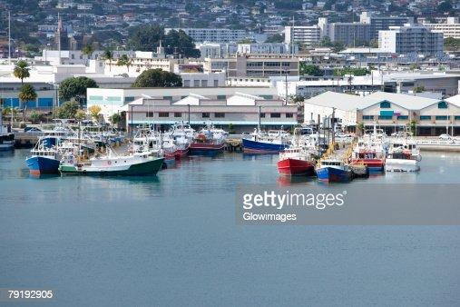 Boats at a harbor : Foto de stock