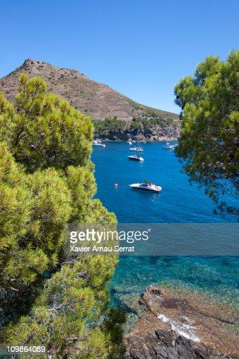 Boats in Cap de creus : Stock Photo