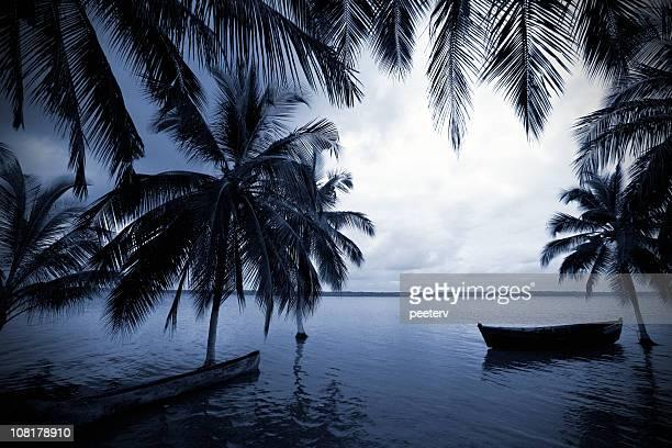 Bateaux dans un lagon avec des palmiers au coucher du soleil