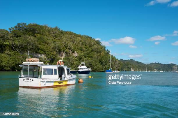 Boats in Mercury Bay.