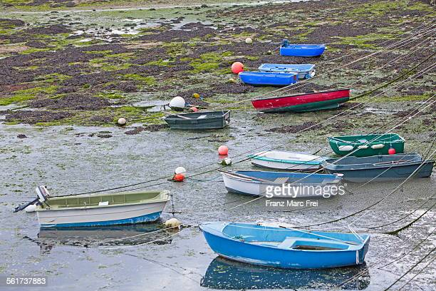 Boats in the port during low tide