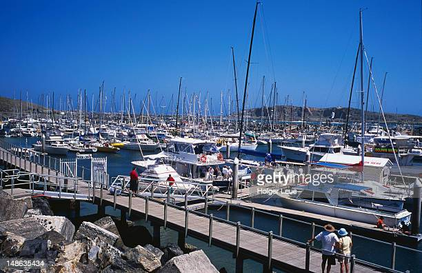Boats moored at Coffs Harbour marina.