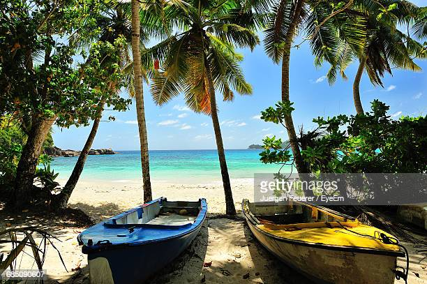 Boats Moored By Trees At Beach During Sunny Day