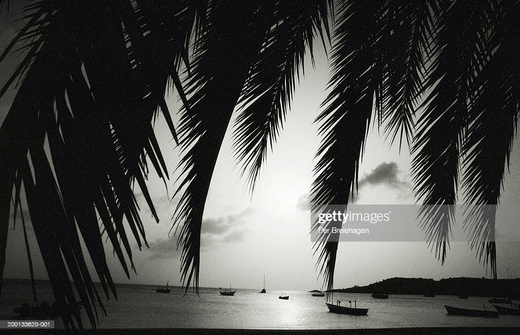 Boats moored in bay of tropical island (grainy, B&W)