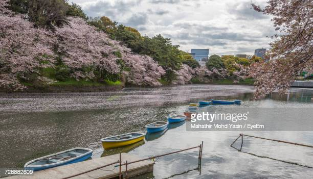 Boats Moored In Lake At Chidori-Ga-Fuchi