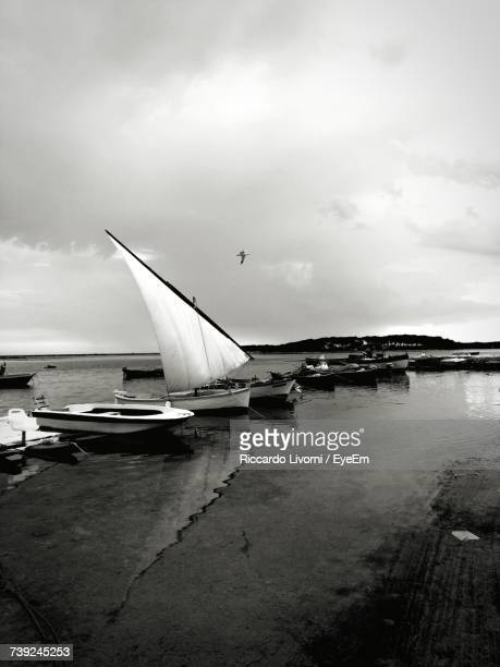 Boats Moored On Shore At Beach Against Sky