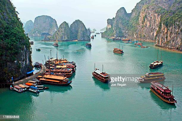 Boats of Halong Bay
