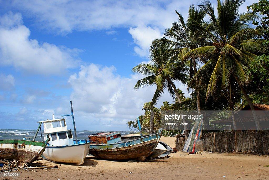 Boats on the beach : Stock Photo
