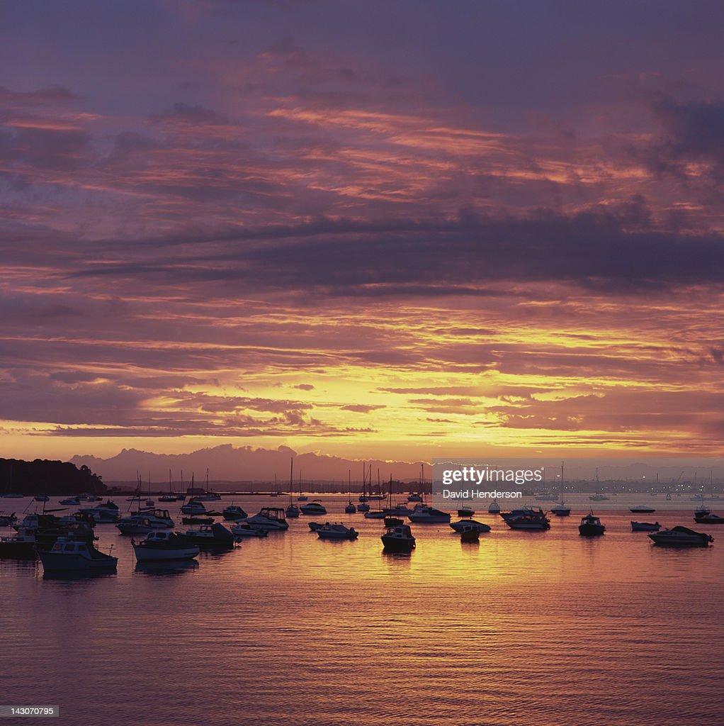Boats sailing in still harbor at sunset : Stock Photo