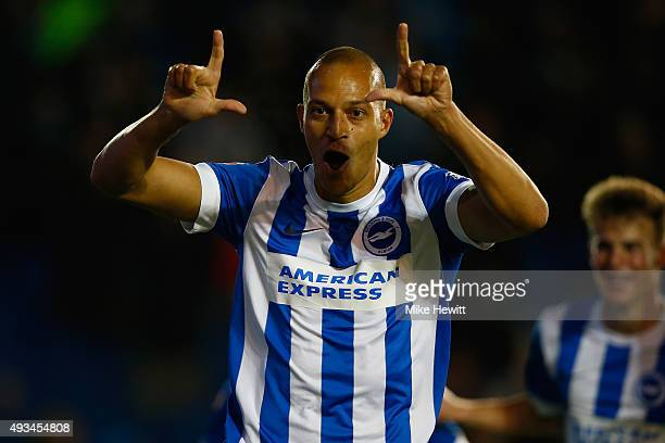 Bobby Zamora of Brighton celebrates after scoring during the Sky Bet Championship match between Brighton Hove Albion and Bristol City at Amex Stadium...