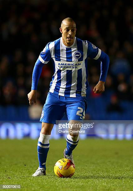 Bobby Zamora of Brighton during the Sky Bet Championship match between Brighton and Hove Albion and Charlton Athletic at The Amex Stadium on December...