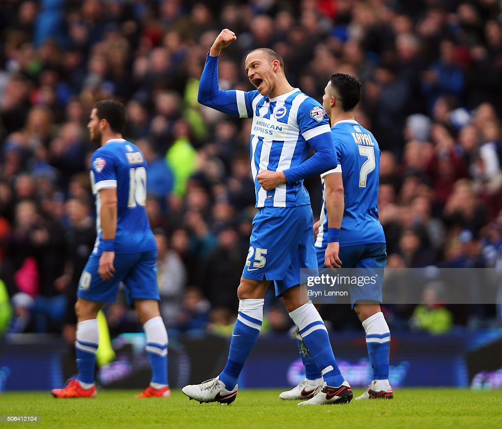 Bobby Zamora of Brighton Hove Albion celebrates with his team after soring the opening goal during the Sky Bet Championship match between Brighton...
