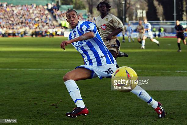 Bobby Zamora of Brighton Hove Albion chases a loose ball during the Nationwide League Division One match between Brighton Hove Albion and Portsmouth...