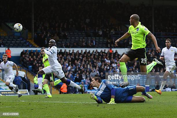 Bobby Zamora of Brighton Hove Albion FC scores a goal for Brighton Hove Albion FC during the Sky Bet Championship match between Leeds United and...