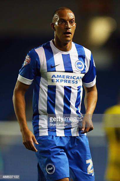 Bobby Zamora of Brighton Hove Albion looks on during the Sky Bet Championship match between Brighton Hove Albion and Rotherham United at Amex Stadium...