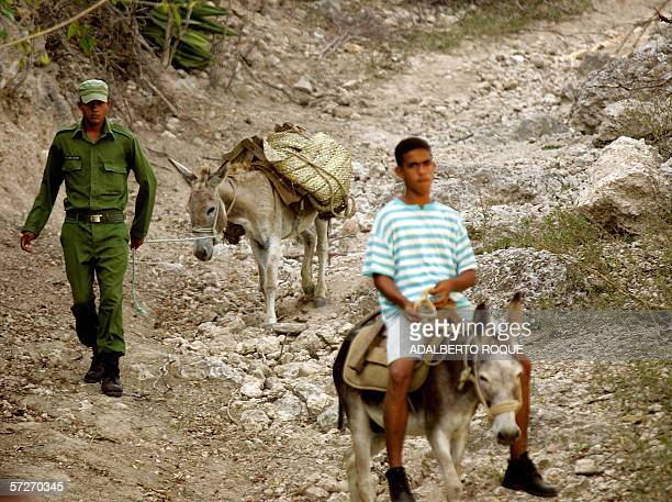 A Cuban soldier is helped by a civilian to transport food on a donkey in Boca del Toro mountain in the Cuban eastern province of Granma 05 April 2006...