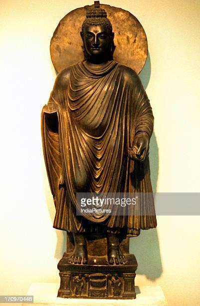 Bodhisattva Gandhara National Museum Delhi India