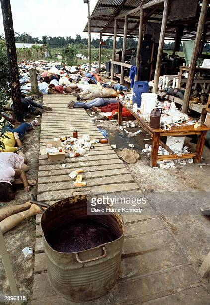 Bodies lie behind a tub of cyanidelaced punch November 18 1978 in Jonestown Guyana after over 900 members of the People's Temple Cult led by Reverend...