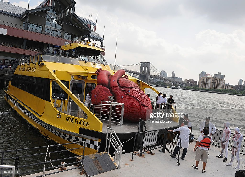 'Bodies...The Exhibition' docents unload a Huge Heart Statue off of a NYC Water Taxi at South Street Seaport on August 15, 2012 in New York City.