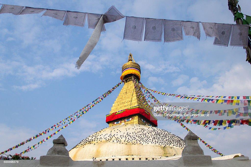 Bodnath stupa with prayer flags at sunrise (Nepal)