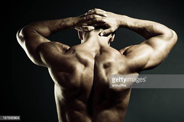 Body Builder zeigt seine Muskeln auf