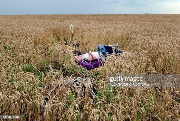 A body lies in a wheat field at the site of the crash of a Malaysia Airlines plane carrying 298 people from Amsterdam to Kuala Lumpur in Grabove in...
