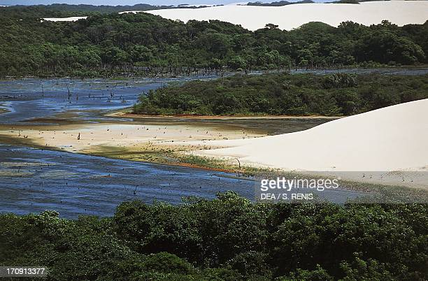 Body of water in the nature reserve located at the mouth of the Parnaiba River Caju Island State of Maranhao Brazil