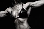 Attractive womans torso