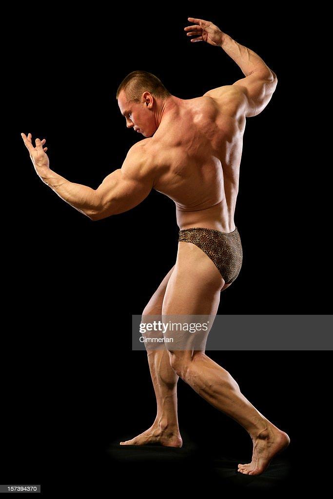 Bodybuilder (XXL) : Stock Photo