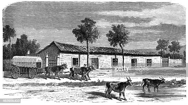 A Boer farm South Africa c1890 An engraving from Robert Brown's The Countries of the World published by Cassell