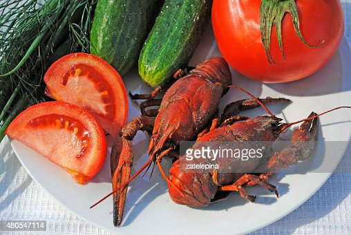 Boiled crayfish, tomato, cucumber, dill and green onions on  plate : Stock Photo