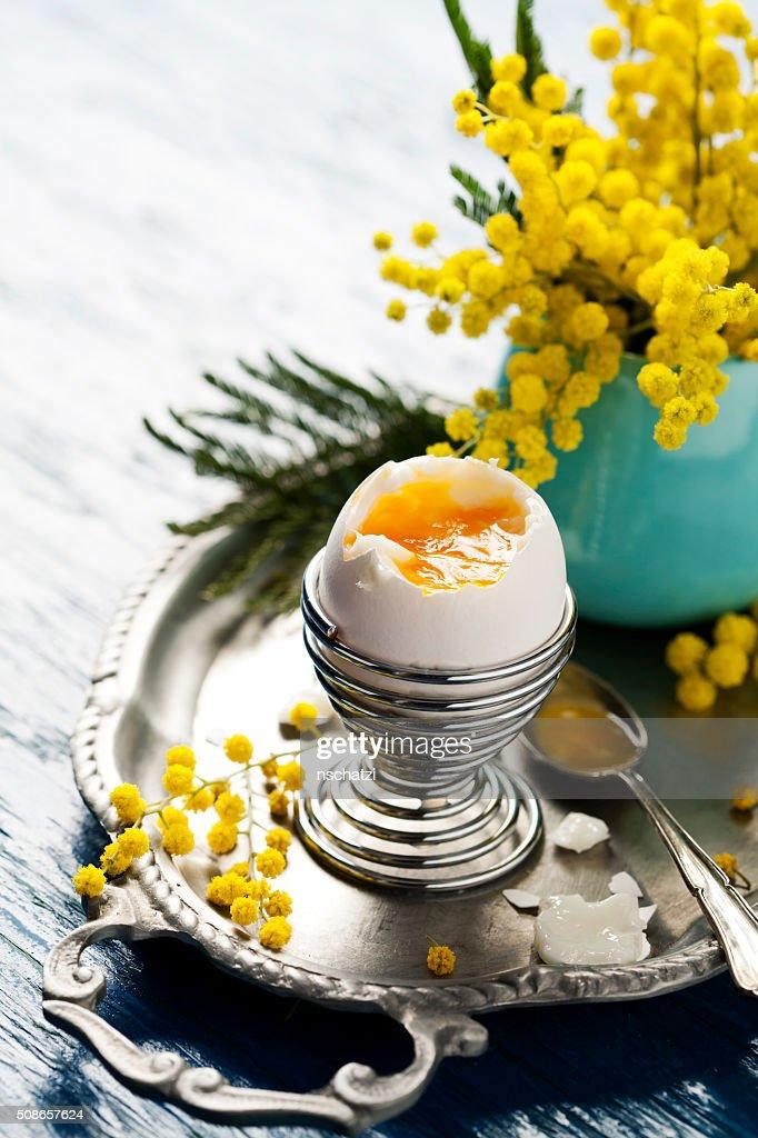 Boiled egg : Stock Photo