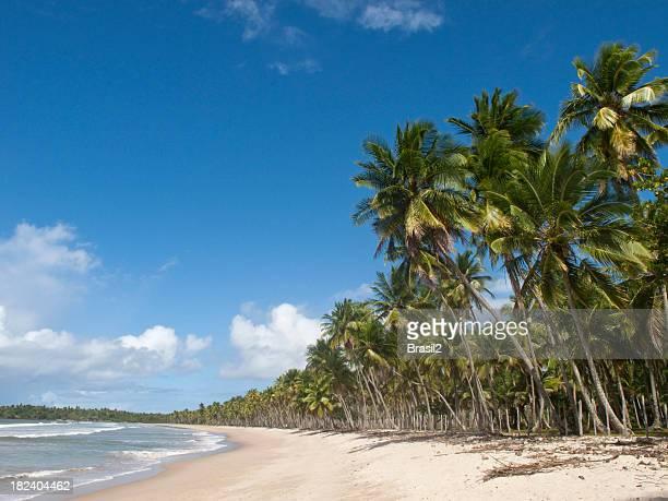Boipeba beach