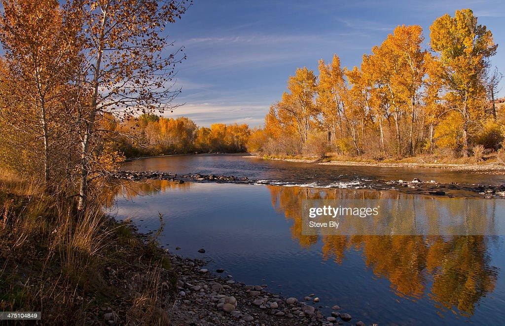Boise Autumn river scenic