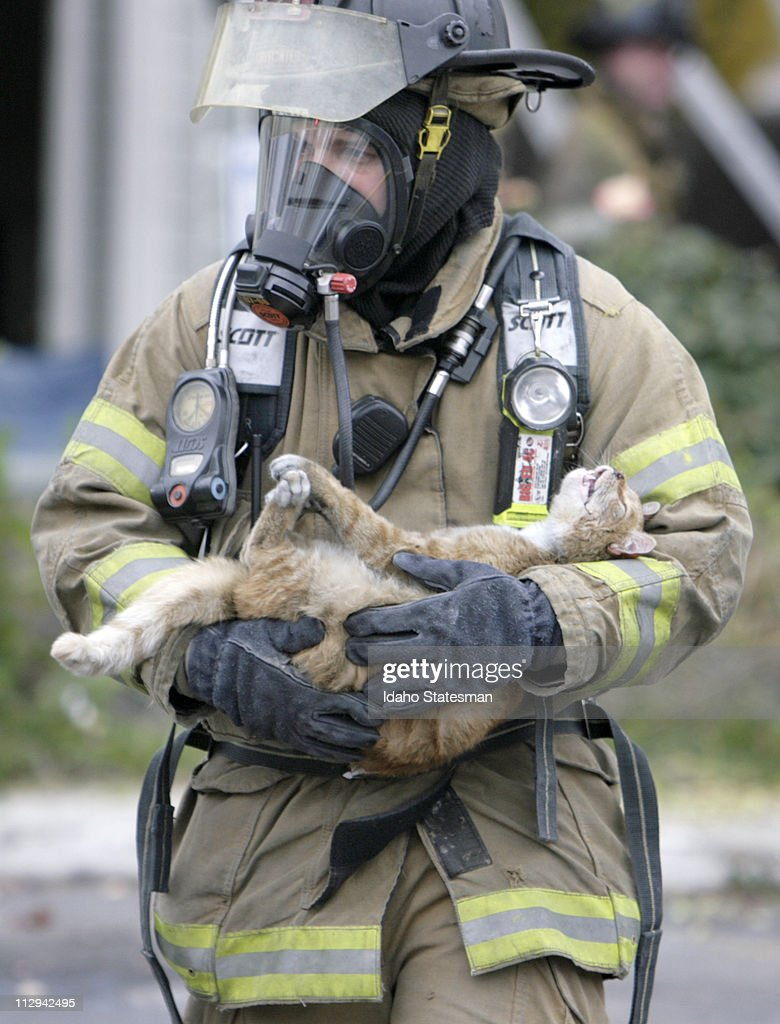 Boise firefighter Dana Brown carries a cat from an apartment building that had caught fire. 'This is my first cat rescue,' said Brown, an 11-year veteran of the department, in Boise, Idaho, Friday, November 9, 2007.