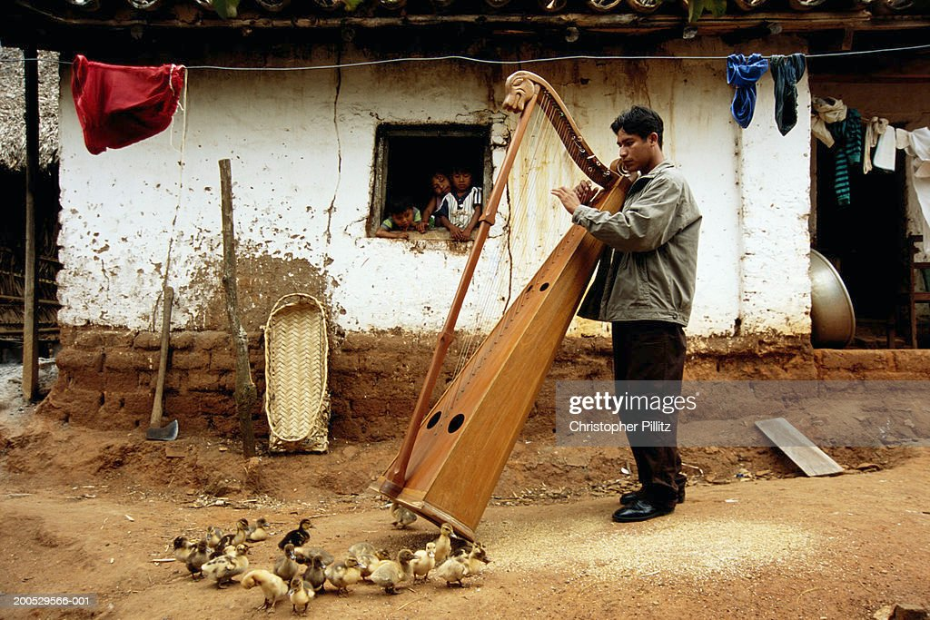 Bolivia, Urubicha, man playing harp in street by chicks and ducklings : Stock Photo