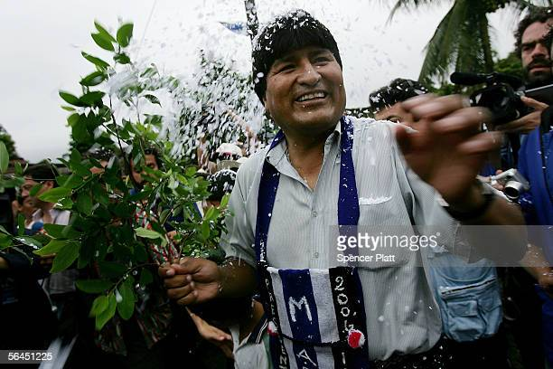 Bolivian presidential candidate Evo Morales holds a coca branch as he is greeted supporters while voting in his hometown December 18 2005 in Villa 14...