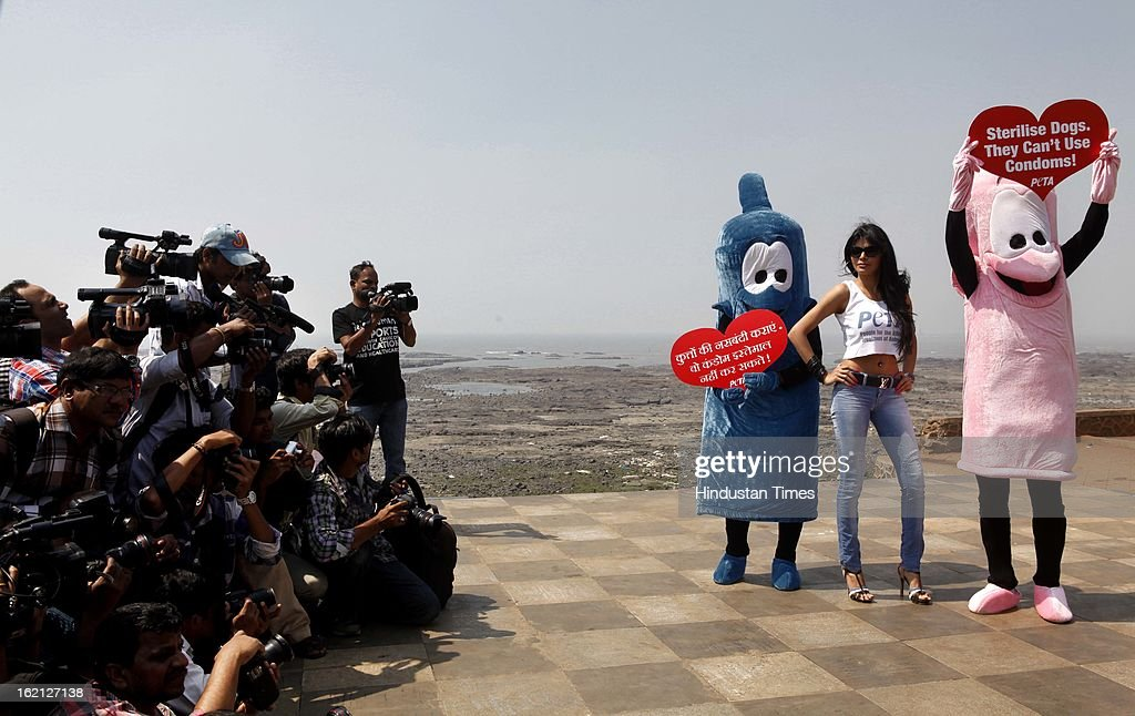 Bollywood film actress and model Sherlyn Chopra, (C), along with two members of People for the Ethical Treatment of Animals (PETA) India dressed as giant condoms and holding signs that read Sterilise Dogs They Can't Use Condoms poses during an awareness campaign on February 19, 2013 in Mumbai, India.