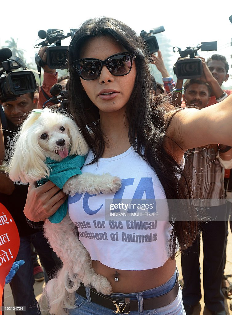 Bollywood film actress and model Sherlyn Chopra holds her pet poodle as she leaves after an awareness campaign by People for the Ethical Treatment of Animals (PETA) India in Mumbai on February 19, 2013. Chopra handed out leaflets encouraging people to get their dog and cat companions sterilised and raise awareness about animal birth control. AFP PHOTO/Indranil MUKHERJEE
