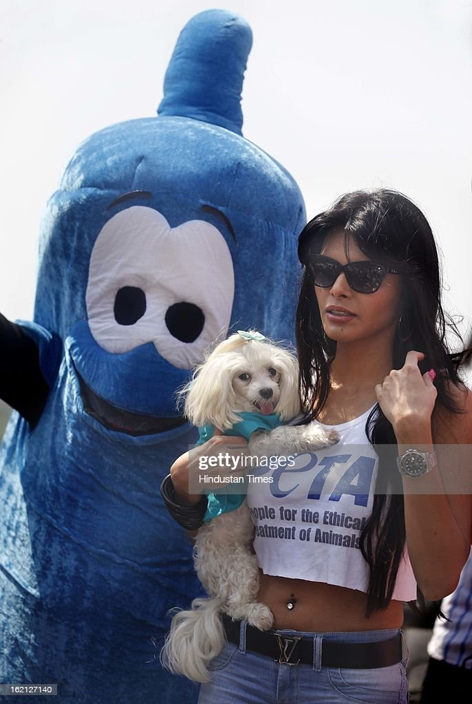 Bollywood film actress and model Sherlyn Chopra holds her pet poodle as she leaves after an awareness campaign by People for the Ethical Treatment of Animals (PETA) India for sterilizing dogs on February 19, 2013 in Mumbai, India.