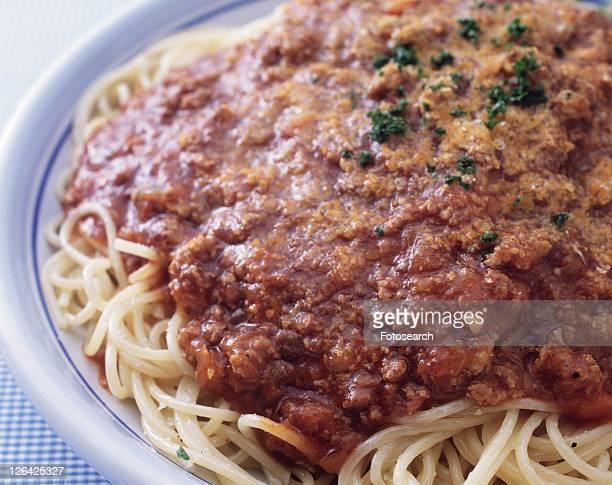 Bolognese Spaghetti, Close Up